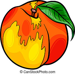 peach fruit cartoon illustration