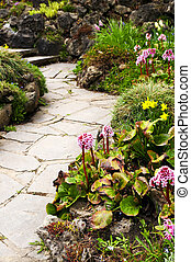 Spring garden with emerging perennial flowers and plants