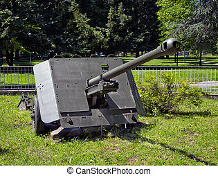 Gun - Big old cannon in the grass of a park