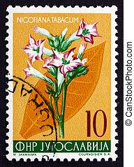郵資, 郵票, 南斯拉夫, 1955 年, 煙草,...