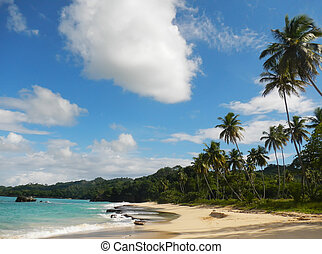 Rincon beach, Samana peninsula, Dominican Republic