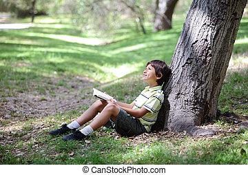 jovem, Menino, leitura, livro, madeiras