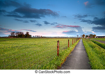 road for bicycles at sunrise in Holland - road for bicycles...
