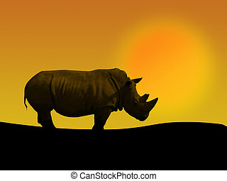 rhino and sunset - an african rhino in a sunset