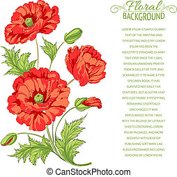 Red poppy card.