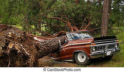 Fallen Tree on Truck - Fallen tree crushing truck after a...