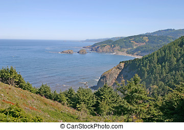 Pacific Northwest Coast - Natural coastline of the Pacific...