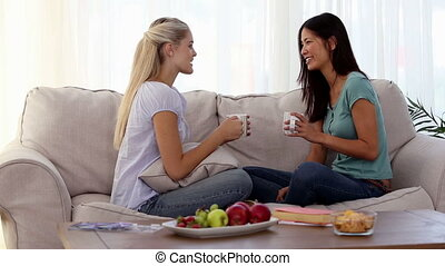 Attractive friends chatting and relaxing together on the...