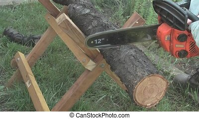 chainsaw cutting the tree trunk