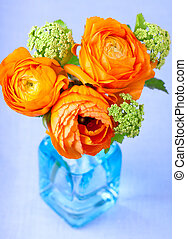 Beautiful ranunculus flowers in a blue glass vase