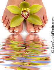 Feet - Pedicured feet with beautiful orchid and water...