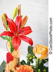 floral, tigre, Lirio, exhibición