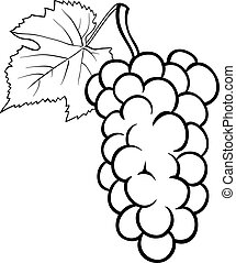grapes illustration for coloring book - Black and White...