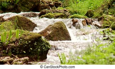 Stream - video footage of a little stream in italy