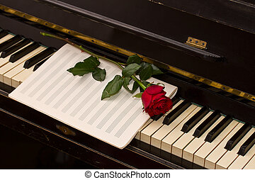 notes paper with one red rose - empty notes paper with one...