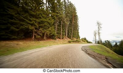 Driving on Road in Forest - driving on a countryroad in...