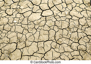 Cracked earth texture - Close up texture of dry and cracked...