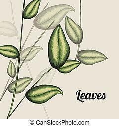 leaves design over white background vector illustration
