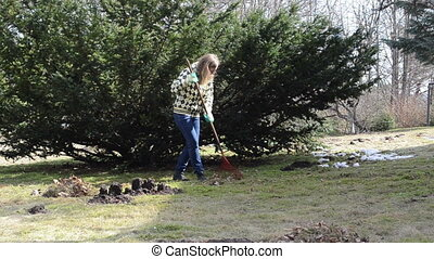 raking leaves in garden - young woman with blue jeans raking...