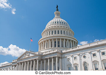 The United States Capitol Building in Washington, DC