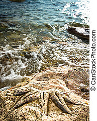 Rock carvings on the beach (octopus) near Sevastopol...