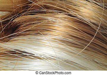 Blond and Brown Hair - Macro shot of blond and brown hair on...