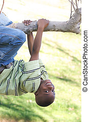 Young Boy Swings From a Tree - Young Boy Having Fun In The...