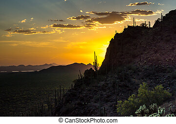 Arizona Sunset - A brilliant sunset backlights the moutain...
