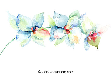 Orchids flowers, watercolor illustration