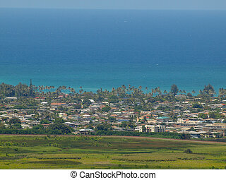 Marsh, Kailua town, and ocean scape