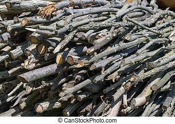 Woodpile - woodpile - stacked beech timber logs, fuel for...