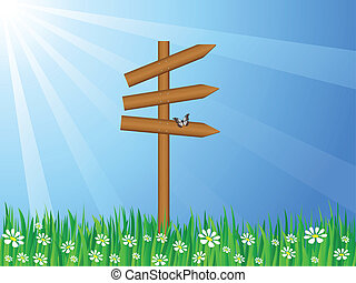grassy field and sign post - Wooden sign post on a grassy...