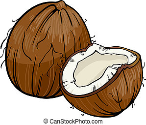coconut cartoon illustration