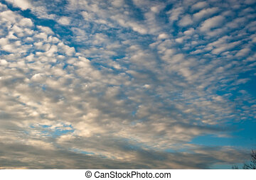 Altocumulus - A cloud formation against a bright blue sky.