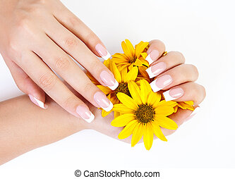 Fingernails and flowers - French manicure on the hands of a...