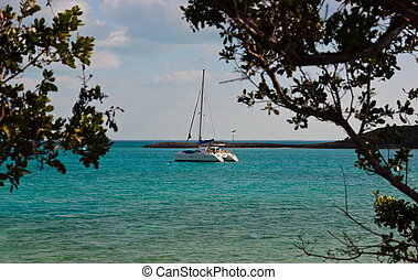 Catamaran Sailboat in the Bahamas - Catamaran sailboat...