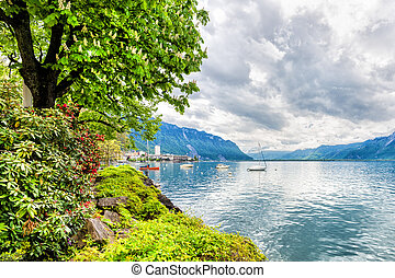 Flowers and trees near lake, Montreux. Switzerland - Flowers...