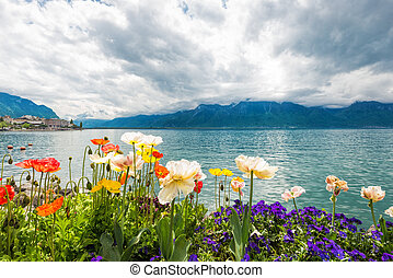 Flowers near lake, Montreux. Switzerland - Flowers near...