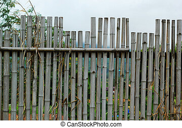 Bamboo fence - the sky.