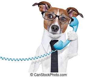 business dog on the phone - business dog with a tie and...