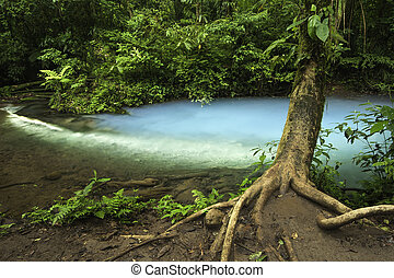 Rio Celeste-Costa Rica - Chemicals contained within the...