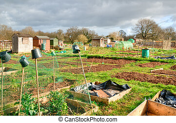 Vegetable allotments - Communal allotments in Bristol,...