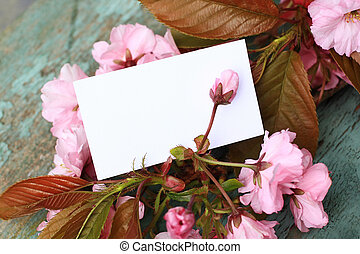Japanes tree blossom with a blank note, add your text.