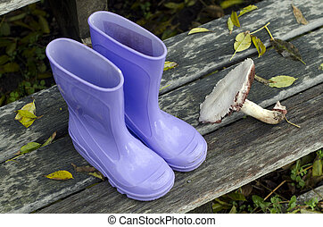 Purple boots and forest mushroom on a doorsteps during the...