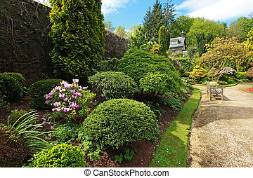 Beautiful spring garden with buxus - Buxaceae, Beautiful...