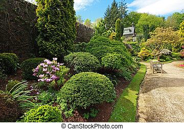 Beautiful spring garden with buxus - Buxaceae, Beautiful...