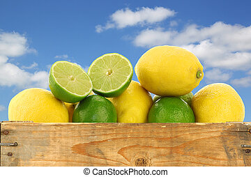fresh lemons and lime fruits