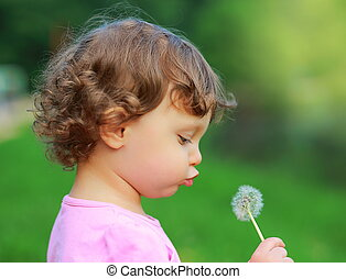 Fun cute child blowing on dandelion flower on green summer...