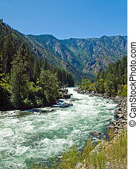 A River Flowing Through a Mountain Forest - Wenatchee River...