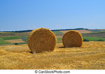 hay straw on rural field with blue sky